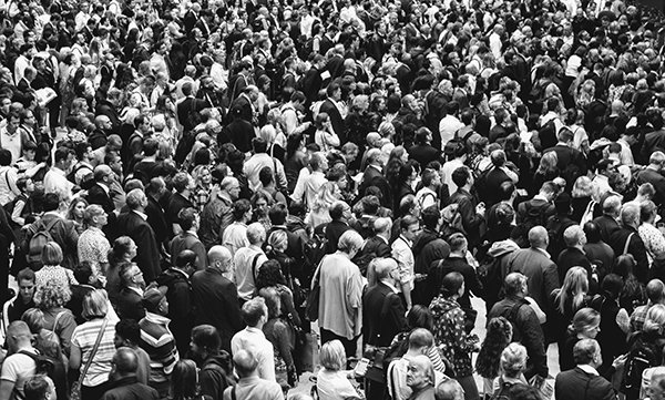envy mob | crowd